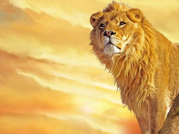 avatar_Lone Lion 1990