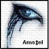 avatar_Amstel