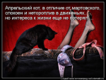 avatar_Мостак№2
